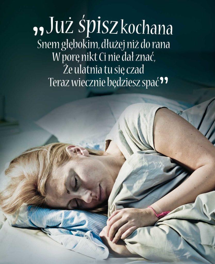 Fot. Straż Pożarna Plakat kampanii informacyjnej dot. czadu.