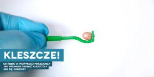 Kleszcz pierwsza pomoc jak usunąć kleszcza Kleszczowe zapalenie mózgu borelioza ochrona przed kleszczem